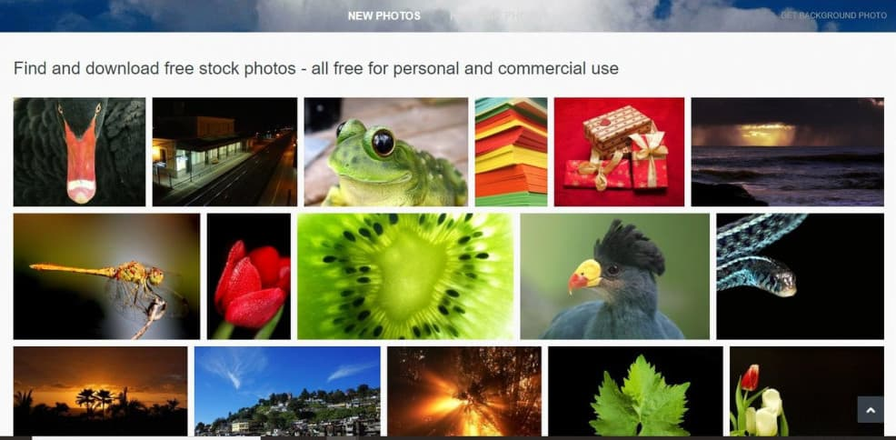 Best Sites To Find Free Images For Your Blog